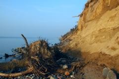 Efter stormene 5