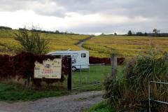 AC-pladsen midt i vinmarkerne