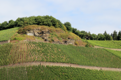 "Vinbjerg - Mange produktionsområder har navne som f.eks. ""Kammer"""