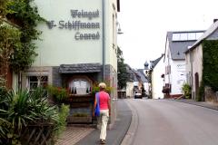 Landsbygaden - Vingårdene ligger side om side